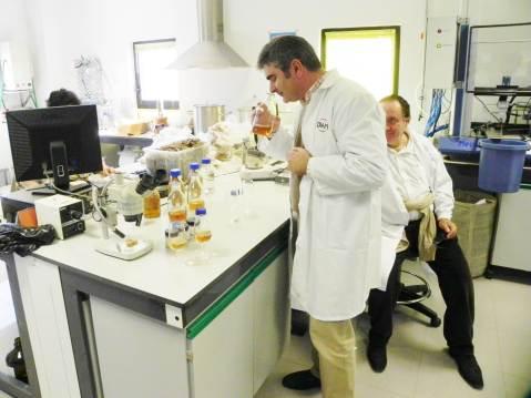 DIAM laboratorij Joaquin Herreros de Tejada Perales