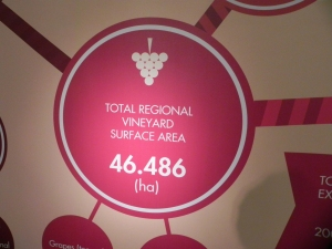 Toscana vinogradi ha