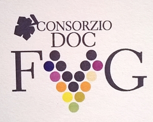 Consorzio FVG4