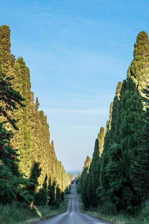 Viale dei Cipressi: zaista impresivna