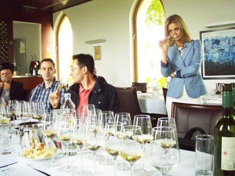 Prezentaciju novih mladih vina iz 2015. Iločkih podruma jako dobro je vodila Karmela Tancabel Za nedavna posjeta grupice novinara Iloku bilo je prilike kušati izvrsnu Veliku berbu graševine 2011 – mpc. za butelju (0,75 l) u podrumu je 299 kuna, te zanimljivi Traminac iz 1977 (dobro očuvan, slatkast), mpc. je 3610 kuna (i prodaje se!). Najstarije vino u arhivi Iločkih podruma d.d. je Traminac 1947, butelja kojega u maloprodaji u podrumu stoji 54.000 kn!