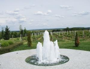 Ima i Juraj Mihaljević fontanu!