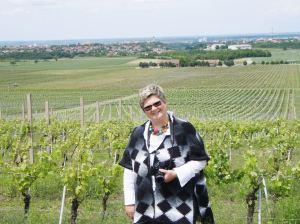 Vesna Štajner, zadužena za aktivnosti na polju turizma, na vinogradskoj poziciji Vukovo, odakle se, u pozadini na slici, vide Ilok i, iza, Bačka Palanka