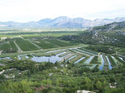 Plodna delta Neretve – zeleni biser Jadrana