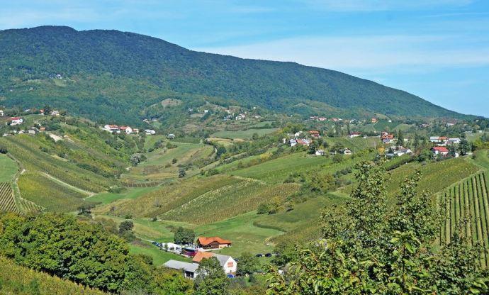 Atraktivni plešivički vinogradarski krajolik