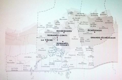 Vinogradi Domaine de la Romanée Conti