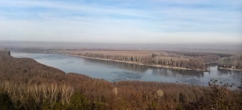 Dunav - pogled s posjeda Brzica/Danube - a view from the Brzica Estate