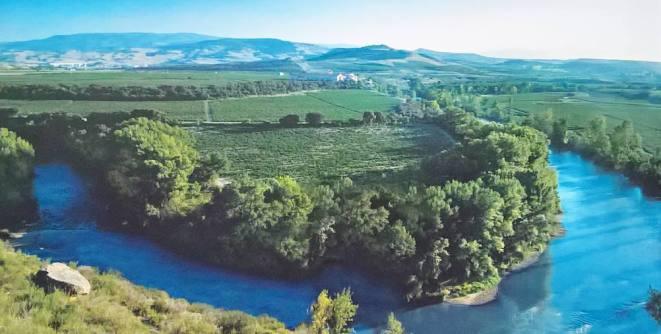 Vinograd Valpiedra obitelji Martinez Bujanda na meandru rijeke Ebro, sličnom onome od Dunava u našem Erdutu