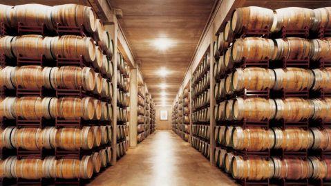 Marques de Riscal – vinski podrum